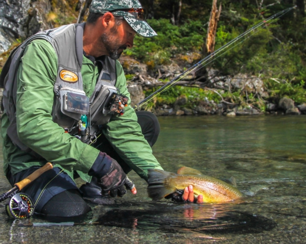 Letting go of a beautiful trout from a south island river is hard to do